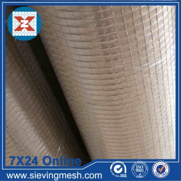 Galvanized after Welded Wire Mesh