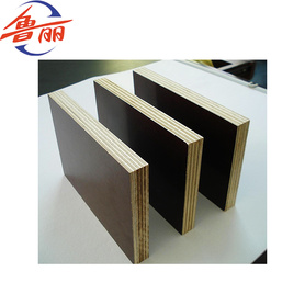 Building and Construction use film faced plywood