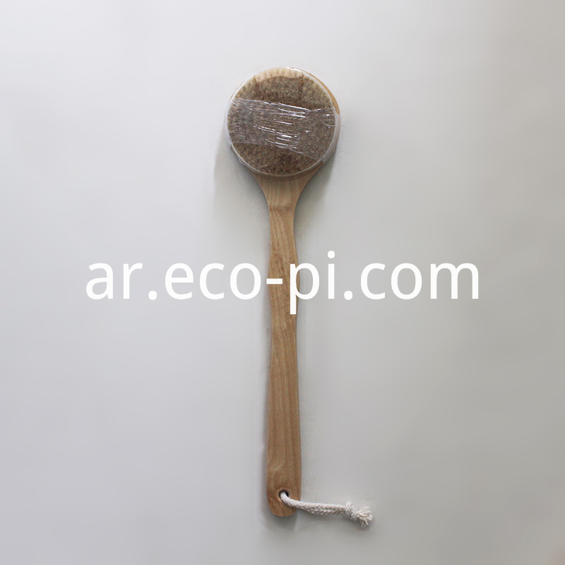 Long Handle Bath Brush