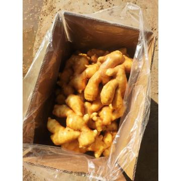 Fresh Ginger Packed In Box