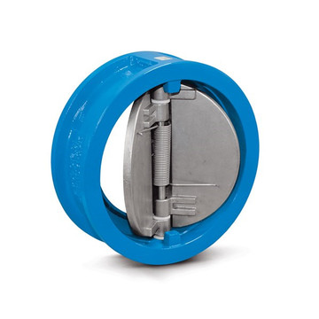 Flap swing check valve