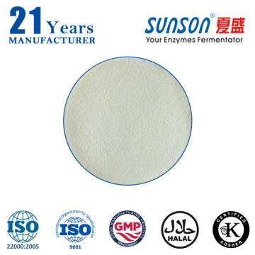 Amylase enzyme powder for desizing textile