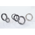 Single Row Deep Groove Ball Bearing (61926)