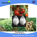 Plant Growth Regulator (PGR) Paclobutrazol 95% TC