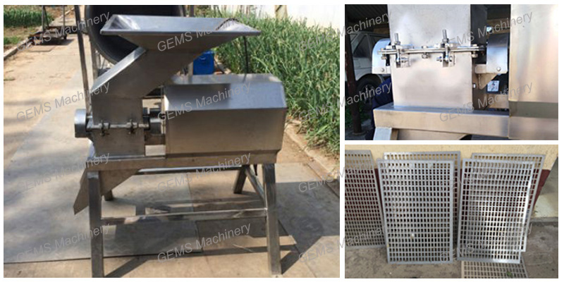 Fruit Vegetable Crusher 1