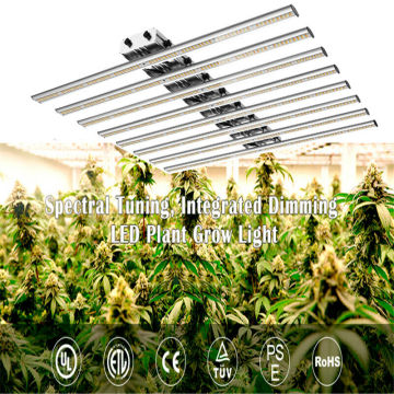 Venda de LED Grow Light de alta eficácia 640W