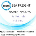 Xiamen Port LCL Consolidation To Nagoya