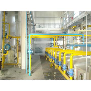400t/d Cottonseed Protein Production Line
