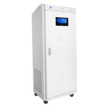 portable air purifier ionie