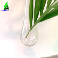 Glass Crafts Wholesale Hydroponic plant vase