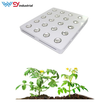 4000W led grow lights versus fluorescent