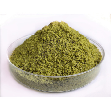 Hemp Powder Rich in Minerals and Antioxidants