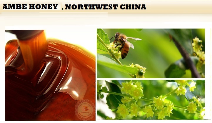 organic natural bee amber buckwheat honey