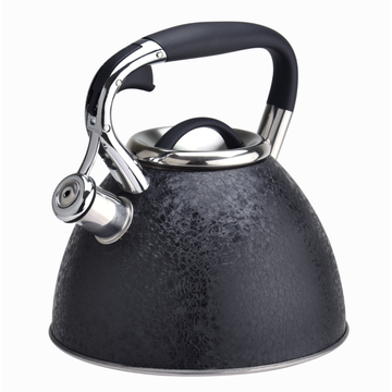 Stainless steel stovetop ice coating coffee tea kettle