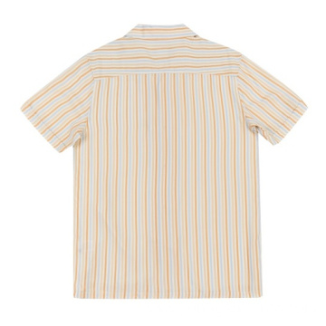 Good sale Men's woven rayon shirt