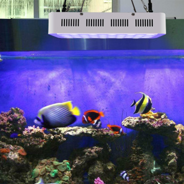 Telefoni 165W Fish Aquarium Tank Led Light