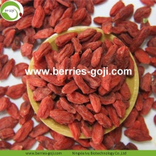 Factory Supply Nutrition Dried Bio Wolfberry