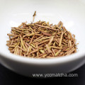 Japanese Hot Premium Bulk Wholesale Organic Hojicha