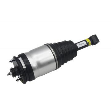 Air Suspension Shock LR041110 For Range Rover Sport