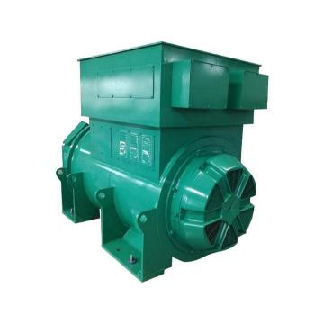 50Hz AC Synchronous Air-cooled 6300V Generators