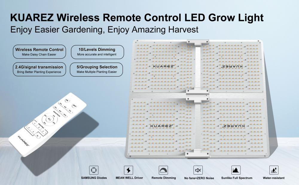 300W LED Growth Lights For Indoor Plants