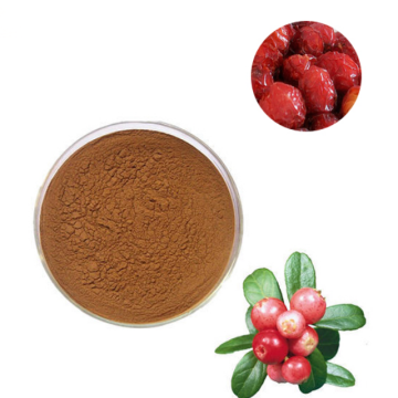best organic rosehip powder