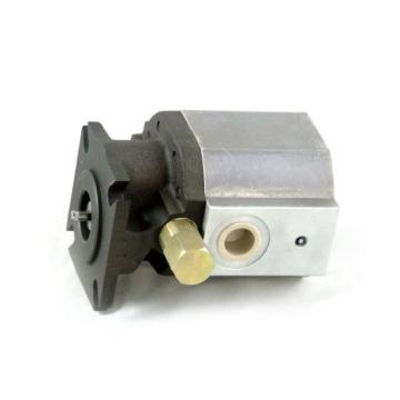 Wood Splitter Gear Pump