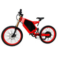 Custom Lithium Battery Power Electric Off-road Bicycle