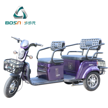 Electric leisure tricycle with noiless motor and controller