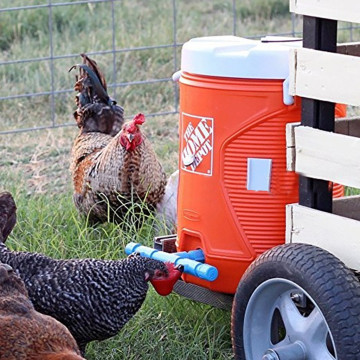 поилка для кур 5Pcs Chicken Fowl Drinker poulailler Feed Automatic Bird Coop Poultry Chicken Fowl Drinker Water Drinking Cups Z5