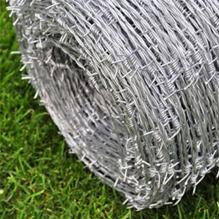 Double strands 4 points galvanized barbed wire
