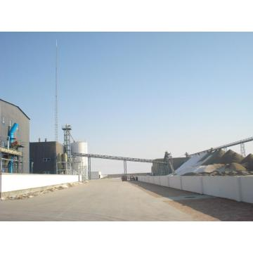 600t/d Cottonseed Protein Production Line