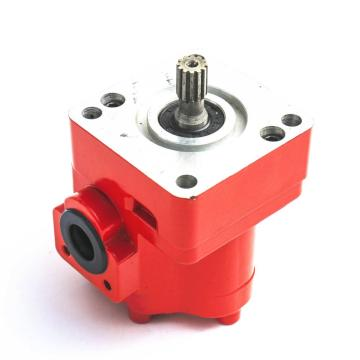 dumper cast iron gear pump