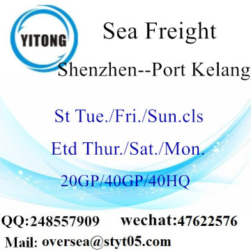 Shenzhen Port Sea Freight Shipping To Port Kelang