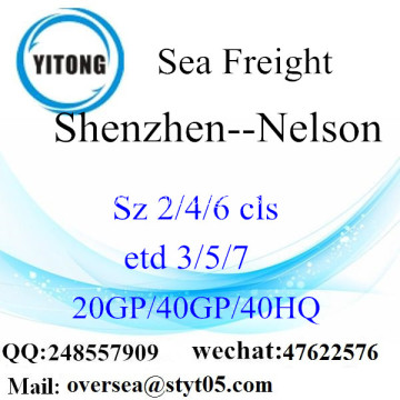 Shantou Port Sea Freight Shipping To Nelson