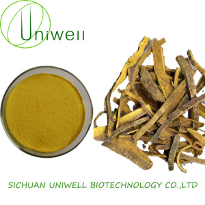 Nature Phellodendron Bark Extract Berberine Powder 97%