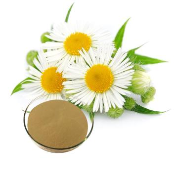 organic chamomile extract powder  for sleep