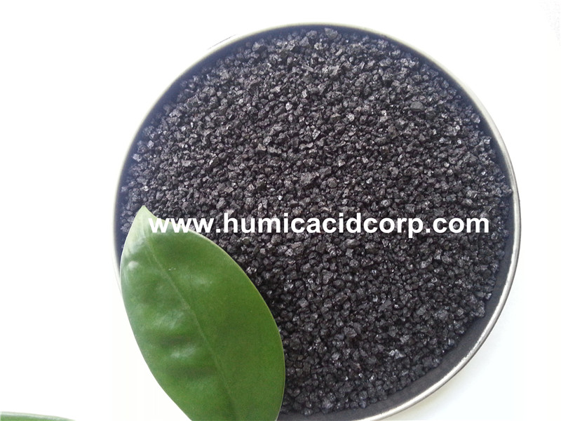 sodium humate for animal feed additives