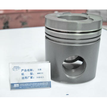 Engine Piston  MWM234