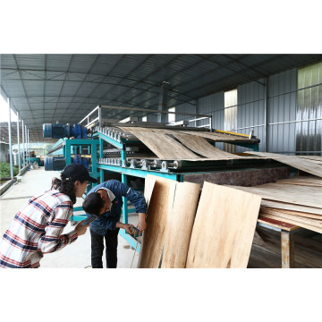 Biomass Core Veneer Dryers