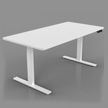 Dual Motor Height Adjustable Desk Stand Up Electric