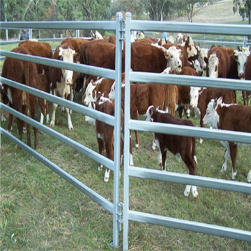 Customized Cattle Welded Wire Mesh Fence Panels