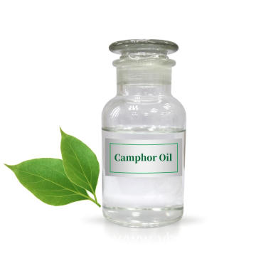 Wholesale Camphor Essential Oil