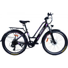 Full Suspension MID Drive Electric Bike