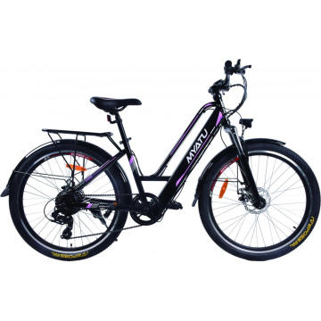 Top Selling Folded Electric Bike