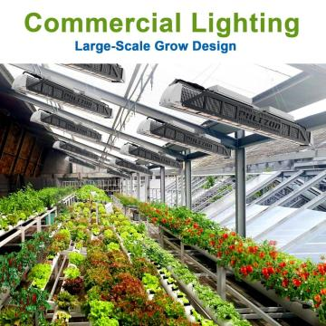 Waterpoof Phlizon LED Grow Light 240W US Stock