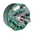 BL6208-01 Brushless Permanent Magnet Motor - MAINTEX