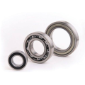 Single Row Deep Groove Ball Bearing (6221)