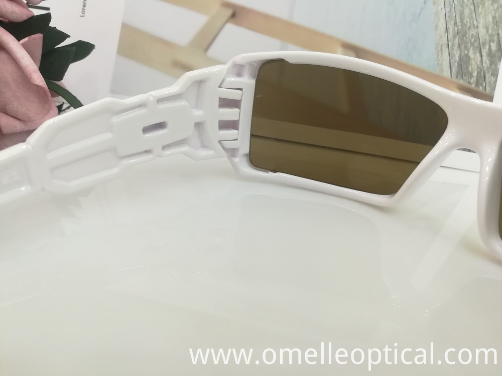 Polarized Sunglass Goggles