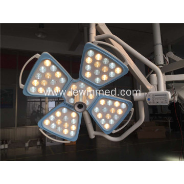 Double domes single dome flower OT lamps
